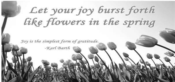 LET YOUR YOUR JOY BURST FORTH