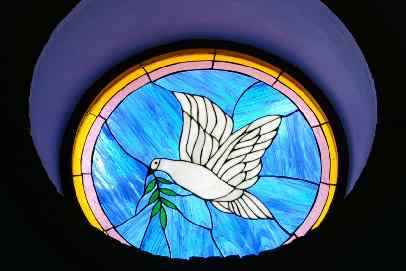 peace dove window
